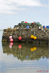 Fenders V-56 (The Terry Eve Archive) Tags: fenders pots nets ropes harbour jura scotland island