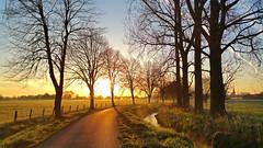 countryside sunrise (Nicola G. Fotografie) Tags: countryside country village nature sunrise morning light sun field lane path feldweg dorf sonnenaufgang morgen bume feld graben natur samsung note4 deutschland germany lippstadt esbeck nrw
