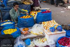 _IMG4461 (stoupaduck) Tags: delhi streetscene flowerseller olddelhi indiancollection