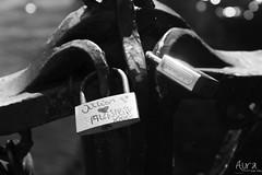 (YoSoyEntropia) Tags: bridge holland love byn puente amor bridges holanda puentes always forever padlock siempre padlocks candado compromiso parasiempre candados claralago tengoganasdeti tgdt a3msc