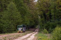 Toy Train (Antonio Martinetti) Tags: forest train branch forestry logging railway railways treno balaton erdei vlak vonat vasut mesztegny