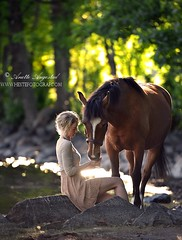 Moments (Hestefotograf.com) Tags: family pink summer horse dog love water beauty animal oslo norway fog river bareback caballo cheval freedom pretty moments friendship canine norwegian pony welsh curious cavalo pferd stallion fra equine fuchs hest equus paard palomino hst 1721 ponni equinephotography equinephotographer hestefotograf