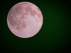 Strawberry Moon (maorlando - God keeps me as I lean on Him!!) Tags: sky usa moon texas full strawberrymoon