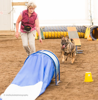 DOGSmart Training Agility Fun Match 2016-18