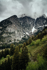 View of the Grand Tetons (C Fehres) Tags: trees sky forest mountains travel snow wyoming grand tetons grandtetons jacksonhole sony sonyalpha sonyimages landscape houstonphotographer outdoor mountain mountainside hill peak