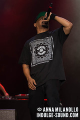 Cypress Hill @ Nova Rock 2016 (annamilanollo) Tags: cypresshill breal djmuggs sendog ericbobo novarock nr16 festival austria