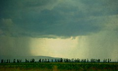 Rain curtains (CameliaTWU) Tags: mountains texture rain clouds romania treeline maramures