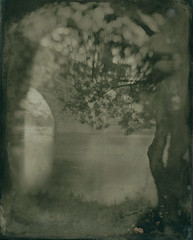 dry collodion plate (Russel process) 001 (charlesguerin) Tags: bridge glass train russel maine dry pont mpp altprocess collodion bouchemaine tanin darlot petzval
