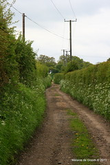 Dirt Road (Melanie Jane - London) Tags: dirtroad essex southeastengland farmroad