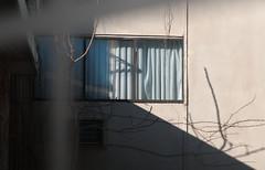 Kerhonkson, New York. (alankin) Tags: light 15fav newyork shadows walls kerhonkson niknala klezkamp nikond300 hudsonvalleyresortandspa 25dec2008 klezkamp2008 nikkorafzoom1755mmf28g klezkamp24 windnows 1100173au