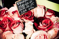 IMG_4715 - Cpia-3 (milandrade) Tags: flowers roses france flower love rose dinner french restaurant wine restaurante frana montmartre meal marais vinho jantar
