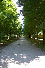 Fulda (Profilbesitzer) Tags: hessen schloss fulda schlosspark schlossgarten