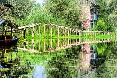 KSMR-2059-20130622 copy.jpg (Miki Badt) Tags: india lakes kashmir ind naturelandscape