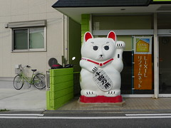 Manekineko  (MRSY) Tags: japan cat big object  osaka oversized manekineko  hirakata welcomecat