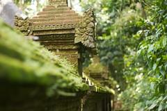Bali 062 - Ubud - forest temple (mckaysavage) Tags: bali wall forest indonesia geotagged temple monkey hindu pura ubud agung dalem