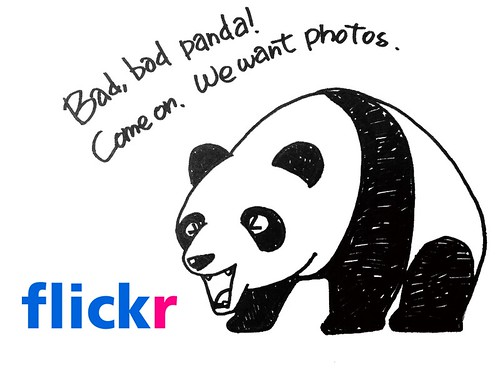 panda_illust_01