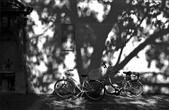 my favourite shadow wall (manni39) Tags: film me bike bicycle wall shadows pentax wand agfa mainz schatten apx fahrrad ombres biciclette agfaapx100 pentaxme r09 selfdevelopped pentax50mm20
