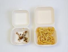 Take away (Karen Schofield Photo) Tags: food colour flash away take takeaway