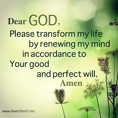 Do not be conformed to this world, but be transformed by the renewal of your mind, that by testing you may discern what is the will of God, what is good and acceptable and perfect. (Romans 12:2 ESV)