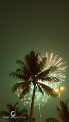 Firework Palm!