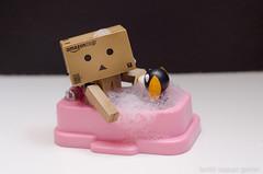 Bathtime :) (Bambit Kapauan-Gaerlan) Tags: danbo danboard danboru amazondanboard amazondanbo