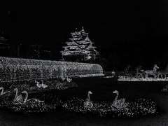 illumination  -  Osaka,Japan (tai_nkm) Tags: light blackandwhite bw castle japan architecture night garden lumix landscapes illumination osaka nightview gh3