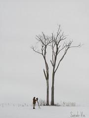 (Sarah-Vie) Tags: img 0666 lephotographe lharfangdesneigesetlephotographe