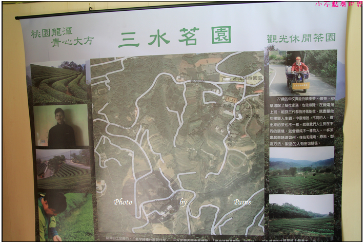 龍潭三水茗園 (12).JPG