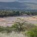 IMG_0458 Kenya, Samburu
