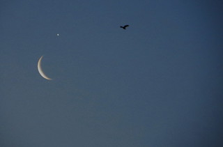 Astronomical events crescent Moon +Venus planet , 26/02/2014..25,000 visitor, found it interesting 07.05.2015.28000 viewing 02,08.2015.VISITOR 30127 ...26.10.2015