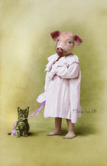 Lizzie and her cat (Martine Roch) Tags: portrait cute animal cat pig kitten child adorable kitty surreal todler martineroch