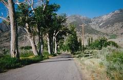 (HappilyIncomplete) Tags: california road trees boulevard ride hillside goldencoast