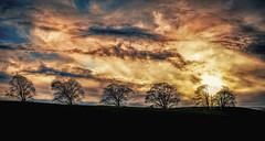 Sunset, Bolton Abbey, UK (RenaldasUK) Tags: uk trees winter sunset england sky sun colour clouds canon landscape evening photo sharp handheld 28 dslr boltonabbey 2470 canon6d