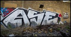ASE ATG (lewis wilson) Tags: city urban colour london canon graffiti paint urbanart graff trackside northlondon allcity ase