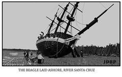 Beached! (peggyjdb) Tags: history beagle argentina lego charles darwin british britishhistory hmsbeagle