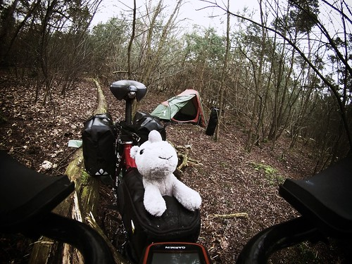 Ringo on wild camping #r2s #ringo #adventuremascotte #bicycle #rhino