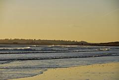 Camber Sands (richwat2011) Tags: sea beach sussex coast seaside sand nikon surf waves shoreline cambersands shore coastline d200 southcoast eastsussex englishchannel ryebay jan15 18200mmvr