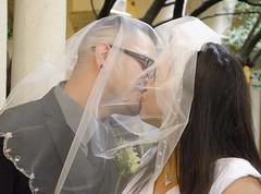 wedding (Truly Priceless) Tags: roses cake groom tears smiles couples kisses brides sacramento weddingdress blushingbrides trulypricelessphotography