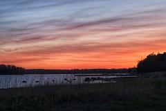 Fine evening (jtunkelo) Tags: sunset finland helsinki dusk auringonlasku kallahti canon70d snapseed