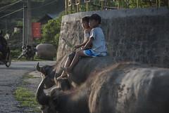 Sapa (sil_photo1) Tags: street travel nikon asia vietnam sapa d3000
