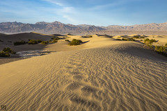 Mesquite Sand Dunes 1 (lycheng99) Tags: california sunset sky mountains texture nature landscape nationalpark sand pattern wind path dunes curves bluesky mesquite deathvalley shape sanddunes mesquitesanddunes deathvalleynationalpark