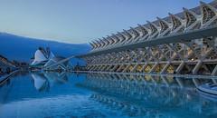 Ciudad de las Artes y las Ciencias. Valencia. (Eduardo Valdivia) Tags: blue espaa building valencia azul spain europa europe edificio ciudaddelasartesylasciencias