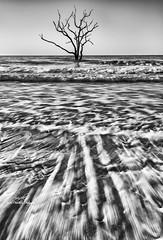 Rushing to shore (Avisek Choudhury) Tags: seascape southcarolina botanybay gitzo edistoisland edistobeach bwlandscape nikond800 avisekchoudhury acratechballhead nikon1635mm avisekchoudhuryphotography