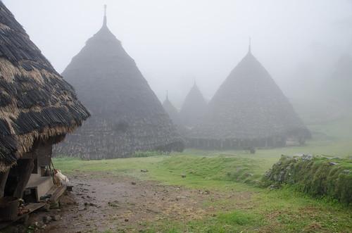 Rain and swirling mist, Wae Rebo