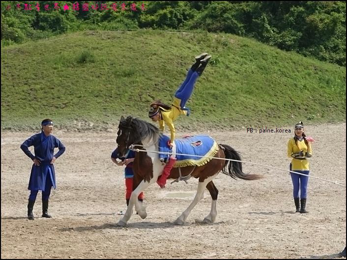 濟州The馬 park (11).JPG