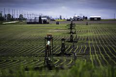 Oilfields, Illinois (Angela Freeman (offline)) Tags: countryside illinois cornfield farming sigma oilfields 18300mm pentaxk5