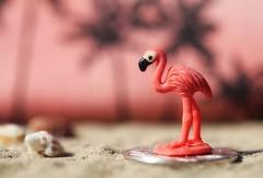 pink flamingo (s@ssyl@ssy) Tags: pink shells toy coin sand flamingo palmtrees tiny hmm peso tinyshells macromondays smallerthanacoin