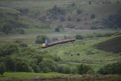 55007 (markkirk85) Tags: train grey yorkshire north engine royal rail railway loco class moors locomotive 55 gala scots pinza 2016 deltic deisel d9000 55022 55007