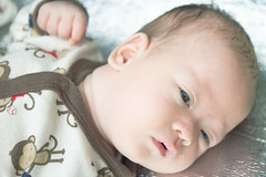 Hector in the sunshine (Jeff Edward) Tags: china travel blue baby eyes wuxi hector teaching jiangsu esl expat tesol tefl