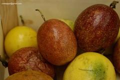 MaracujasDSC7417 (costapppr) Tags: passiflora cor maracuj fruto edulis